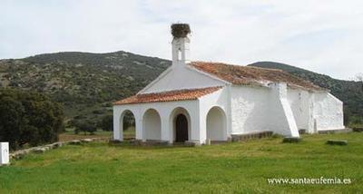 en-santa-eufemia-encuentra-peral-mas-grande-espana-paisajes-con-historia
