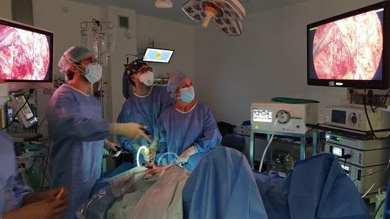 un-estudio-internacional-liderado-cirujanos-reina-sofia-mejor-articulo-publicado-2020