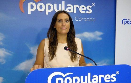 pp-consigue-parlamento-andaluz-apruebe-reclamar-gobierno-mayor-capacidad-electrica-norte-cordoba