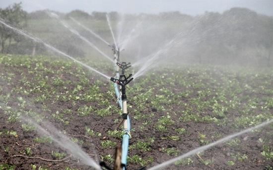 abierto-plazo-ayudas-eficiencia-energetica-sector-agropecuario-de-regadio