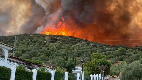 el-incendio-de-alcaracejos-no-ha-sido-incluido-en-las-ayudas-del-gobierno