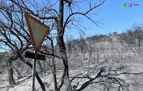 la-junta-pide-gobierno-rectificar-criterio-propuesto-solicitar-ayudas-por-incendios